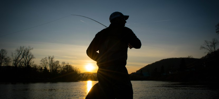 The Five Essentials of Fly Casting